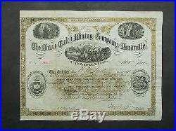 COLORADO The IOWA GULCH MINING Co. Of LEADVILLE 1880 NOT CANCELLED